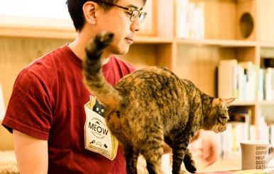 西太子堂|Cat's Meow Books |安村正也さん